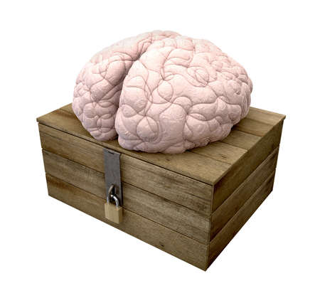 A rough wooden planked box with a lid on hinges locked by a brass padlock and a hasp with a regular brain perched on top on an isolated background photo
