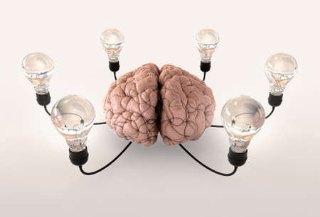 inventiveness: A regular brain encircled by six cords attached to regular lightbulbs on a light background Stock Photo