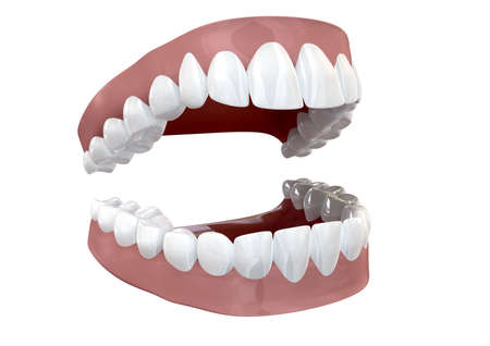 seperated: Seperated upper and lower sets of human teeth set in gums on an isolated background