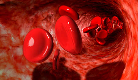 A macro closeup of a blood vein with red blood cells flowing through it photo