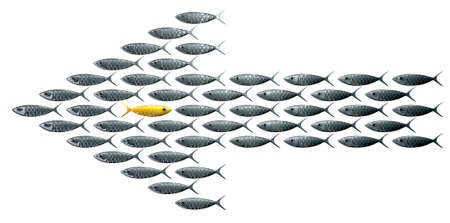 be the change: A perspective view of a school of stylized silvery fish swimming in the shape of an arrow with a contrasting golden one swimming in the opposite direction on an isolated background