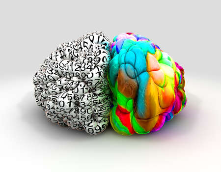 analytical: A typical brain with the left side depicting an analytical, structured and logical mind, and the right side depicting a scattered, creative and colorful side on an isolated background