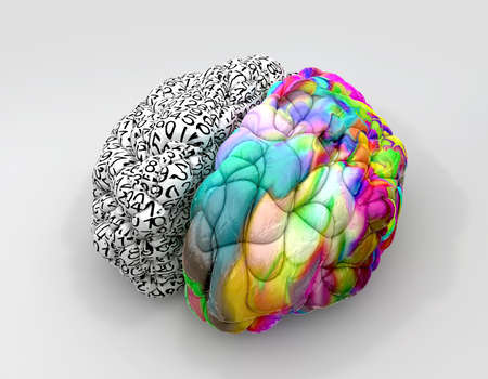 sides: A typical brain with the left side depicting an analytical, structured and logical mind, and the right side depicting a scattered, creative and colorful side on an isolated background