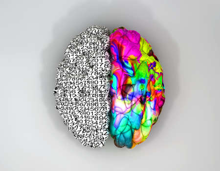 brain and thinking: A typical brain with the left side depicting an analytical, structured and logical mind, and the right side depicting a scattered, creative and colorful side on an isolated background