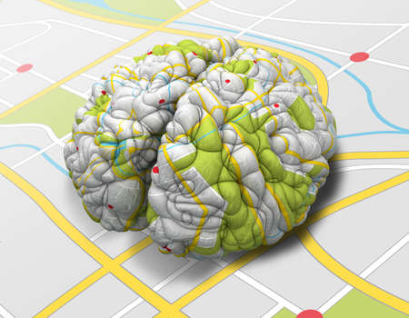 creative mind: A brain wrapped with a simple road map texture laying on a flap road map