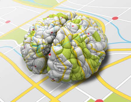 mente humana: Un cerebro envuelto con una textura de hoja de ruta sencilla que pone en una hoja de ruta solapa Foto de archivo