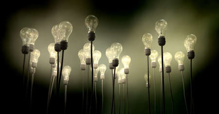 light fitting: A group of regular light bulbs attached to cables reaching skyward creating an eerie greenish foggy glow on a dark background