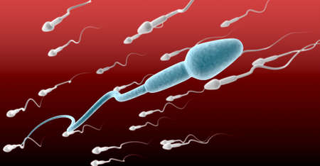 sperm cell: A microscopic perspective view of a blue sperm cell in the foreground swimming in the opposite direction to a group of white sperm on a red and maroon background