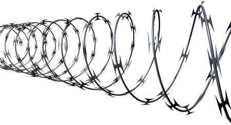 barbed wire fence: A coil of razor wire on an isolated white background