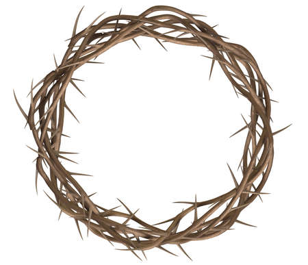 corona de espinas: Una vista superior de las ramas de espinas teje en una corona que representa la crucifixión en un fondo aislado Foto de archivo
