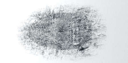 black powder: An extreme closeup of a fingerprint thats been dusted with black powder for evidence at a crime scene on an isolated textured white background