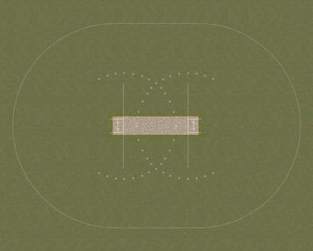 cricket field: A direct top view of the layout of a cricket field set up on grass