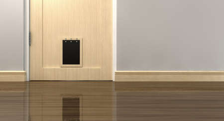skirting: An inside view of a regular black pet flap on a light wood door surrounded by walls