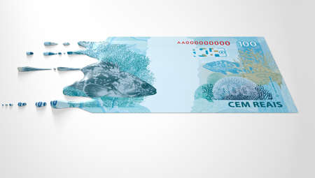 liquified: A concept image showing a regular Brazilian Real banknote that is half melted and liquified dripping on an isolated studdio background