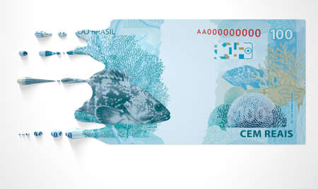 A concept image showing a regular Brazilian Real banknote that is half melted and liquified dripping on an isolated studdio background