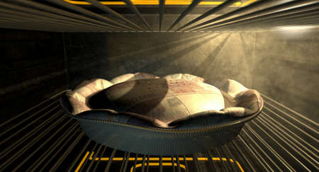 quota: A closeup concept of a money pie made with Euro bank notes baking in a heated oven