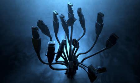 cable red: Una colección ramo de Ethernet se conecta con los acordes agrupados y hacia fuera en los extremos hacia arriba sobre un fondo de estudio retroiluminada oscuro