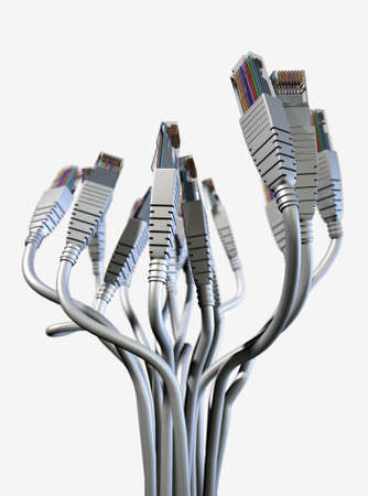 A bouquet collection of ethernet plugs with chords bundled together and spread out at the ends facing upwards on an isolated white studio background