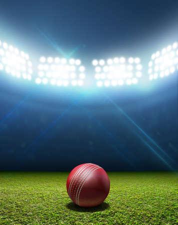 terreno: Uno stadio da cricket con una palla rossa pelle cricket su un marcato erba campo verde di notte in notturna illuminati Archivio Fotografico