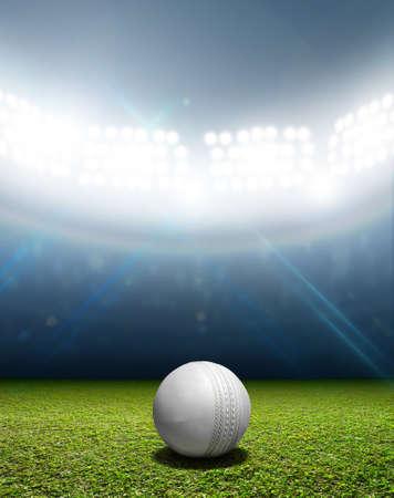 terreno: Uno stadio da cricket con una palla di cuoio grillo bianca su un marcato erba campo verde di notte in notturna illuminati