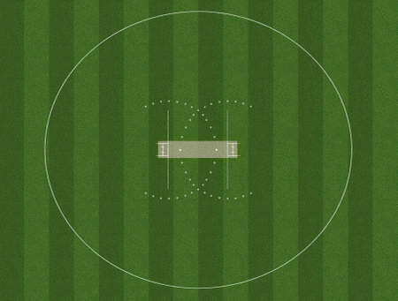 A cricket pitch marked in white on green grass