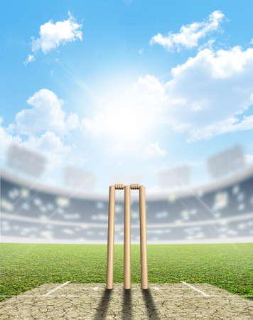 クリケットのピッチと青空の下で昼間のウィケットを設定・ クリケット スタジアム 写真素材
