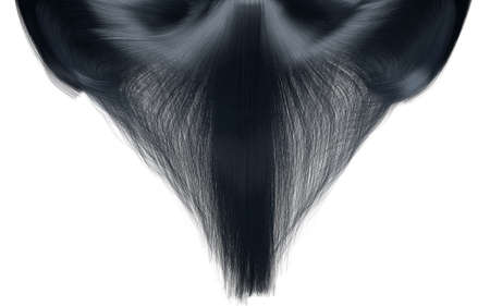 hairpiece: A closeup freeze frame of a head of shiny cascading straight black hair on an isolated white background Stock Photo