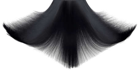 A closeup freeze frame of a head of shiny cascading straight black hair on an isolated white background photo