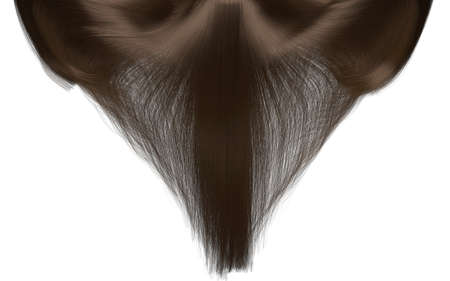 hairpiece: A closeup freeze frame of a head of shiny cascading straight brown hair on an isolated white background Stock Photo