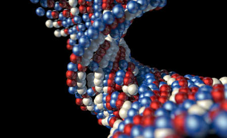 microscopic: A microscopic view of a sequenced pattern of DNA style red blue and white atoms on an isolated background Stock Photo