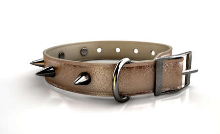 spiked: A brown leather dog collar with metal spiked studs isolated on an isolated white studio background Stock Photo