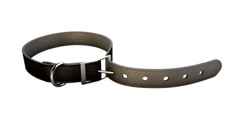 A regular leather belt that has been tightened very narrow on an isolated white studio background