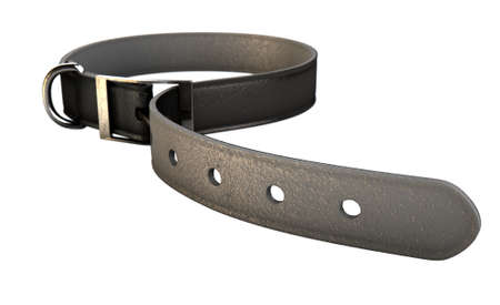 tightened: A regular leather belt that has been tightened very narrow on an isolated white studio background