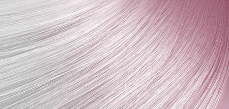 hairpiece: A 3D render of a closeup view of a bunch of shiny straight grey hair with pink undertones in a wavy curved style