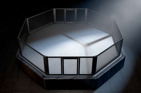 indoor sport: A 3D render of an MMA fight cage arena dressed in black padding spotlit by a single light on an isolated dark background Stock Photo