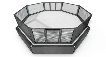 padding: A 3D render of an MMA fight cage arena dressed in black padding on an isolated white studio background