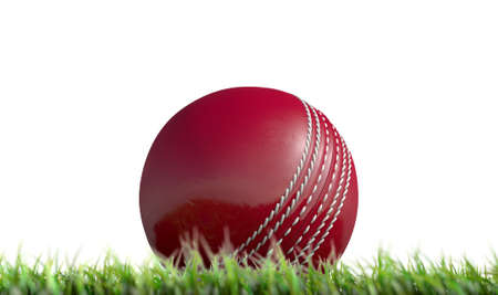 A low upward view of a regular leather cricket ball resting on green grass on an isolated white background - 3D render Stock Photo