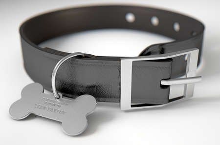 A concept depicting pavlovian conditioning theory of a leather dog collar and a bone shaped identification tag showing ownership to ivan pavlov - 3D render