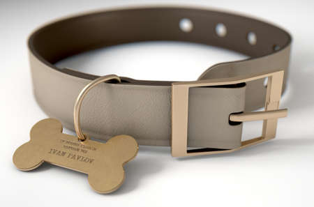 collarin: A concept depicting pavlovian conditioning theory of a leather dog collar and a bone shaped identification tag showing ownership to ivan pavlov - 3D render