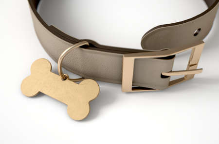 A brown leather dog collar with a brass bone shaped identification tag isolated on a white studio background - 3D render