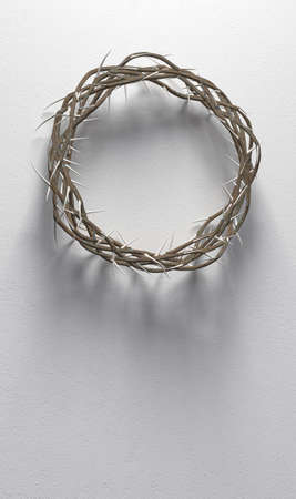 Branches of thorns woven into a crown depicting the crucifixion casting a shadow on isolated white background - 3D render Foto de archivo