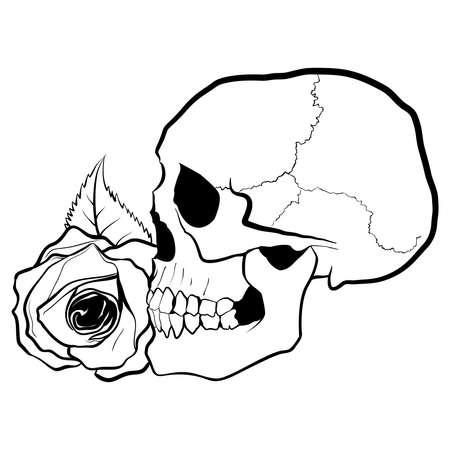 rose: Skull with Rose