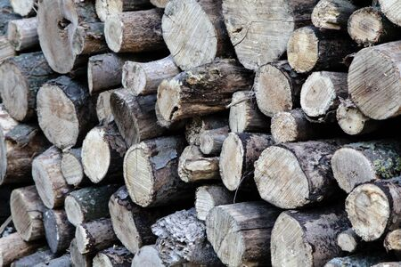 Firewood. Round logs folded for storage