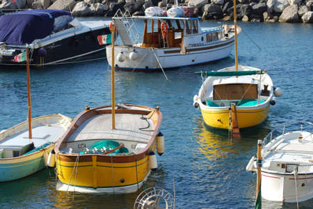 industriousness: fishing boats in a small harbor