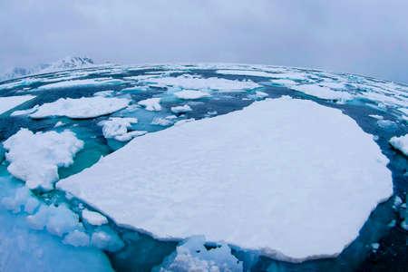 Drift floating Ice, Albert I Land, Arctic, Spitsbergen, Svalbard, Norway, Europe