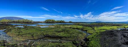Fernandina landscape galapagos islands Banco de Imagens