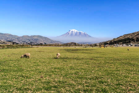 Chimborazo landscape with in a sunny day