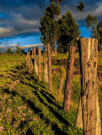 Barb wire fence in Palenque Bolivar  Ecuador