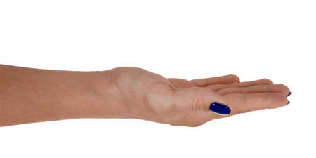 Open hand holding something, middle-aged womans skin, blue manicure. Isolated on white background.