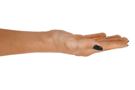 Open hand holding anything, adult womans skin, black manicure. Isolated on white background. Stock Photo